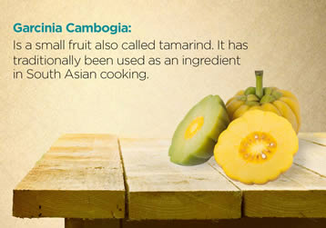 What Exactly is Garcinia Cambogia?